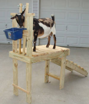 English Furniture By Lazy Boy, Goat Stanchion Plans, Home